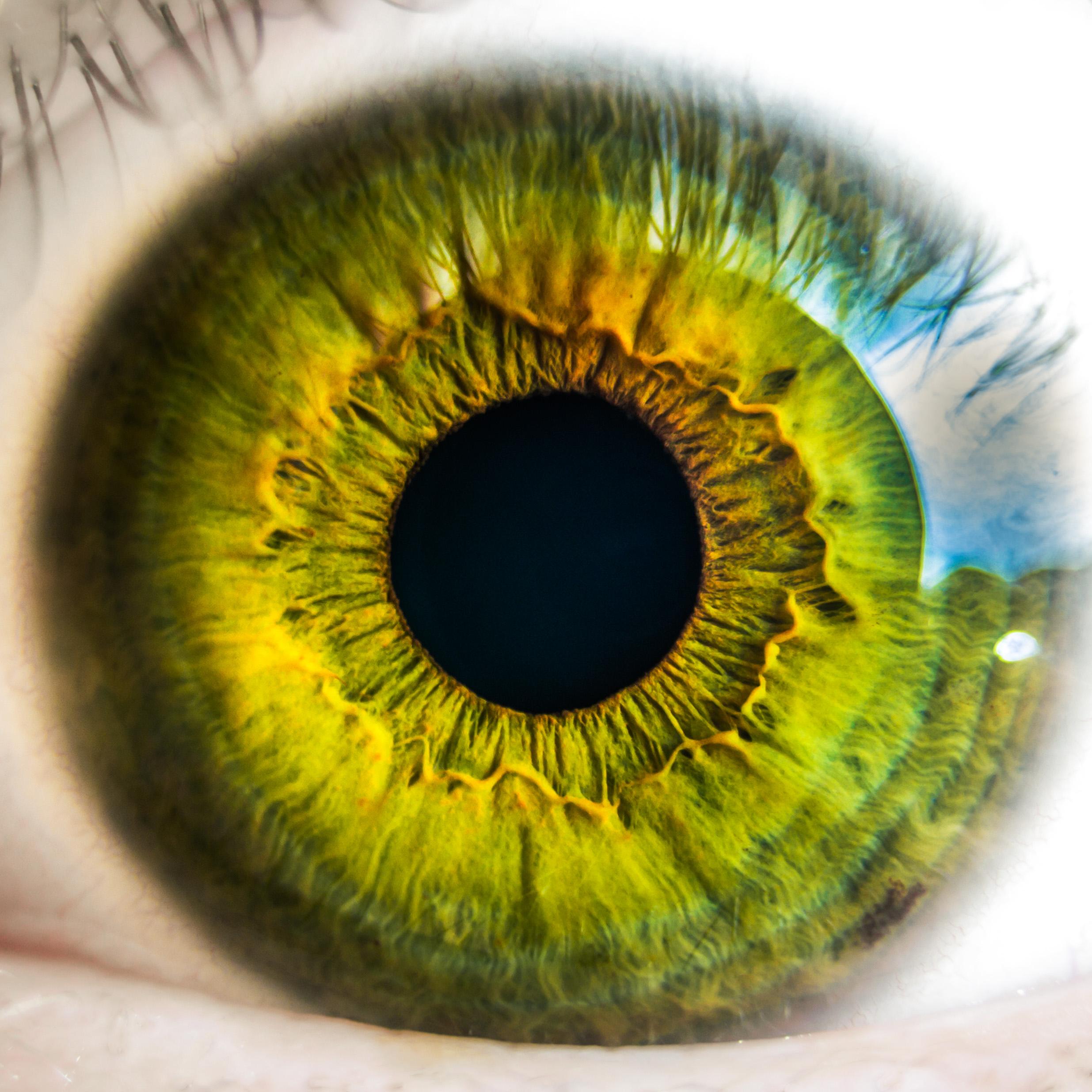 Olhar nos olhos em silêncio: Descubra os benefícios dessa prática